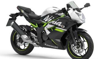 Kawasaki Ninja 125 – 8/2020 full