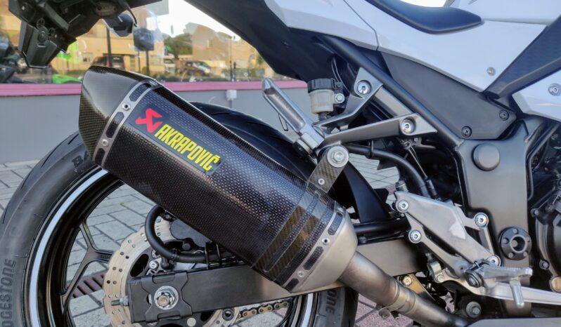 Kawasaki Ninja 300 Performance (A2) full