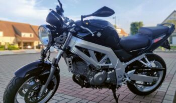 Suzuki SV650 full
